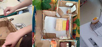 Vბ კლასის პროექტი ბუნებისმეტყველებაში